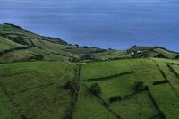 São Miguel, Prémios GPS 2013 [Açores]